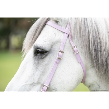 WESTERN BRIDLE (Full Browband) made from BETA BIOTHANE (Solid Colored