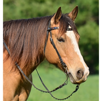 Snap On Browband WESTERN BRIDLE made from BETA BIOTHANE (With BLING)
