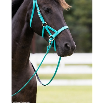 Convertible Bitless Bridle made from BETA BIOTHANE (Solid Colored)