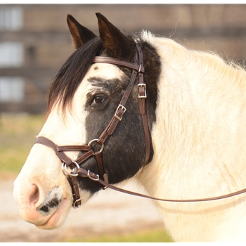 ****ALMOST LEATHER ****SIDEPULL Bitless Bridle made from BETA BIOTHANE