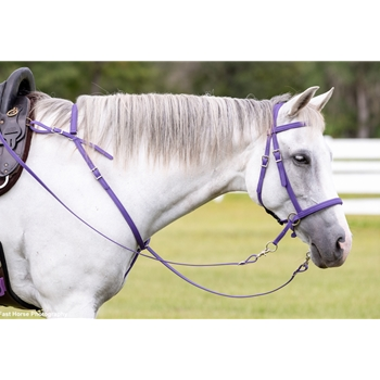 Scrawbrig Bitless Bridle made from BETA BIOTHANE (Solid Colored)