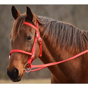 ENGLISH CONVERT-A-BRIDLE made from NYLON