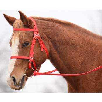 PICNIC BRIDLE or SIMPLE HALTER BRIDLE made from NYLON