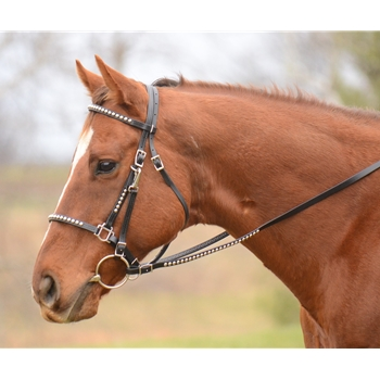 Traditional HALTER BRIDLE with BIT HANGERS made from BETA BIOTHANE (with JEWELS RHINESTONES BLING)