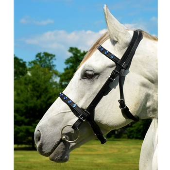 ENGLISH CONVERT-A-BRIDLE made from Beta Biothane (with BLING)