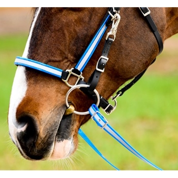 **FLASH SALE** REFLECTIVE Bridles made from BETA BIOTHANE