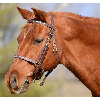 Clear Bling Halter Bridle Headstall Headstall w Brass Hardware (Horse Size)**Discount Tack**