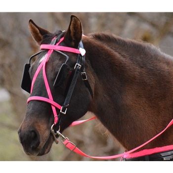 Colored DRIVING BRIDLE Made from Beta Biothane