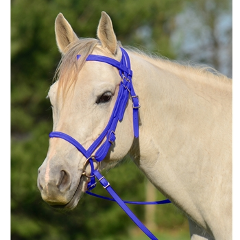 ENGLISH BRIDLE with CAVESSON made from BETA BIOTHANE (Solid Colored)