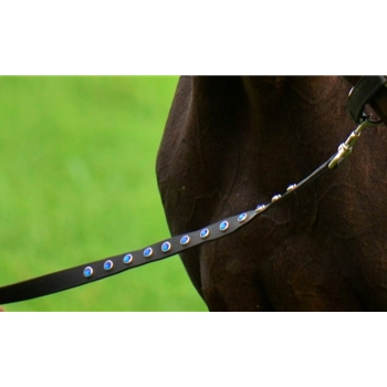 BETA BIOTHANE LEADLINES (with Bling) Lead Ropes Lead Lines