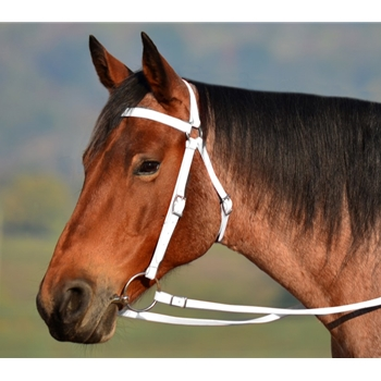 White AUSTRALIAN BARCOO OUTRIDER AUSSIE BRIDLE made from BETA BIOTHANE