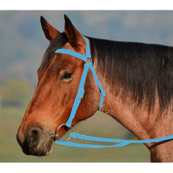 Light Blue AUSTRALIAN BARCOO OUTRIDER AUSSIE BRIDLE made from BETA BIOTHANE