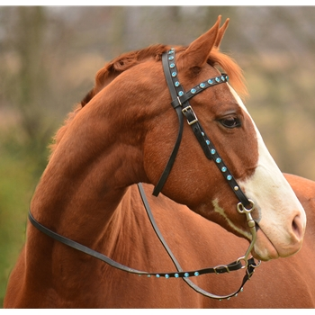 Western Bridle Full Browband Made From Beta Biothane