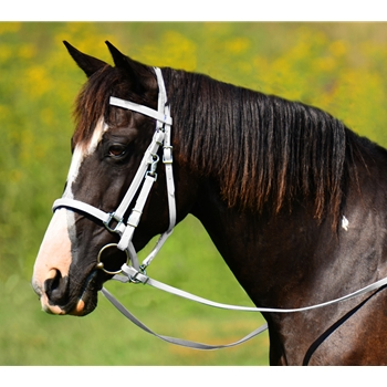 WHITE Traditional HALTER BRIDLE with BIT HANGERS made from BETA BIOTHANE