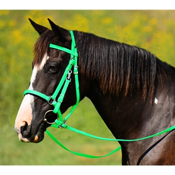LIME GREEN Traditional HALTER BRIDLE with BIT HANGERS made from BETA BIOTHANE