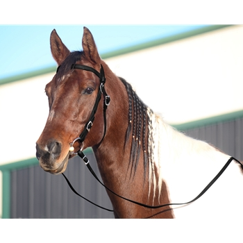BLACK WESTERN BRIDLE (Full Browband) made from BETA BIOTHANE