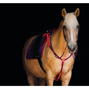 ENGLISH BREAST COLLAR made from BETA BIOTHANE (Any 2 COLOR COMBO)