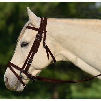BROWN ENGLISH BRIDLE with CAVESSON made from BETA BIOTHANE
