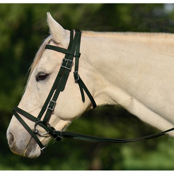 HUNTER GREEN ENGLISH BRIDLE with CAVESSON made from BETA BIOTHANE