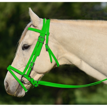 LIME GREEN ENGLISH BRIDLE with CAVESSON made from BETA BIOTHANE