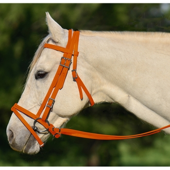ORANGE ENGLISH BRIDLE with CAVESSON made from BETA BIOTHANE