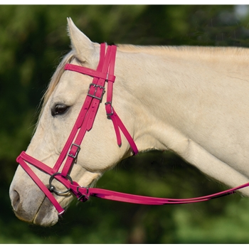PINK ENGLISH BRIDLE with CAVESSON made from BETA BIOTHANE