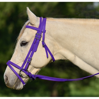 PURPLE ENGLISH BRIDLE with CAVESSON made from BETA BIOTHANE
