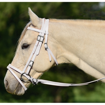 WHITE ENGLISH BRIDLE with CAVESSON made from BETA BIOTHANE