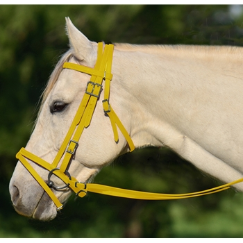 YELLOW ENGLISH BRIDLE with CAVESSON made from BETA BIOTHANE