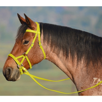 YELLOW SIDEPULL Bitless Bridle made from BETA BIOTHANE