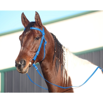 LIGHT BLUE WESTERN BRIDLE (Full Browband) made from BETA BIOTHANE
