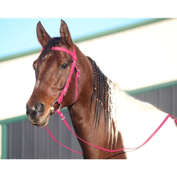 PINK WESTERN BRIDLE (Full Browband) made from BETA BIOTHANE
