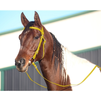 YELLOW WESTERN BRIDLE (Full Browband) made from BETA BIOTHANE