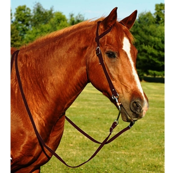 BROWN WESTERN BRIDLE (One Ear or Two Ear Split Ear Browband) made from BETA BIOTHANE