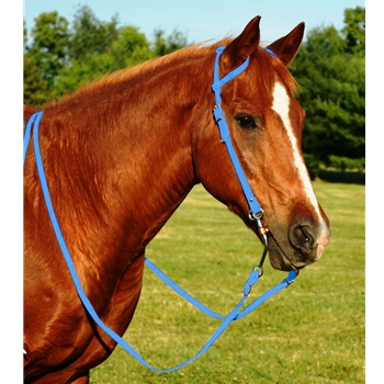 LIGHT BLUE WESTERN BRIDLE (One Ear or Two Ear Split Ear Browband) made from BETA BIOTHANE