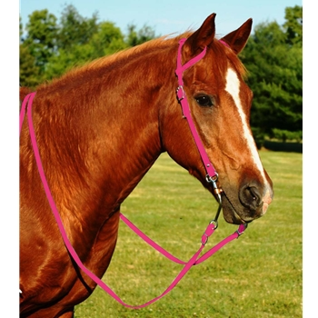 PINK WESTERN BRIDLE (One Ear or Two Ear Split Ear Browband) made from BETA BIOTHANE