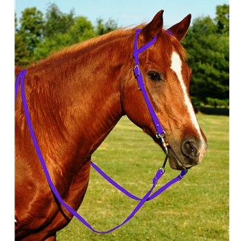 PURPLE WESTERN BRIDLE (One Ear or Two Ear Split Ear Browband) made from BETA BIOTHANE