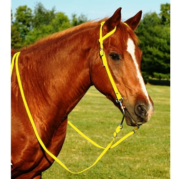 YELLOW WESTERN BRIDLE (One Ear or Two Ear Split Ear Browband) made from BETA BIOTHANE