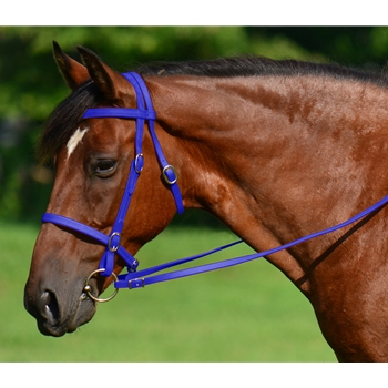 DARK BLUE ENGLISH CONVERT-A-BRIDLE made from BETA BIOTHANE