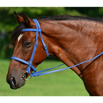 LIGHT BLUE ENGLISH CONVERT-A-BRIDLE made from BETA BIOTHANE