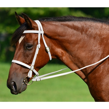 WHITE ENGLISH CONVERT-A-BRIDLE made from BETA BIOTHANE