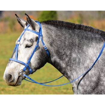 LIGHT BLUE MEDIEVAL BAROQUE WAR or PARADE BRIDLE with reins Beta Biothane