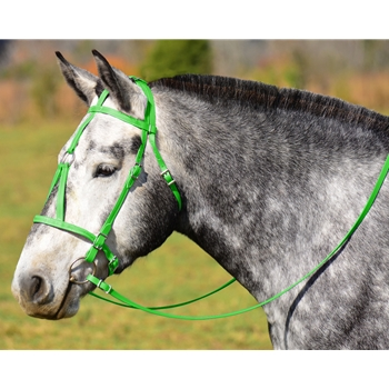 LIME GREEN MEDIEVAL BAROQUE WAR or PARADE BRIDLE with reins Beta Biothane