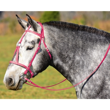 PINK MEDIEVAL BAROQUE WAR or PARADE BRIDLE with reins Beta Biothane