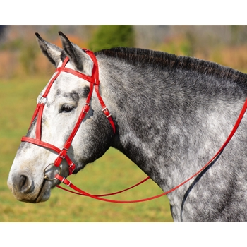 RED MEDIEVAL BAROQUE WAR or PARADE BRIDLE with reins Beta Biothane