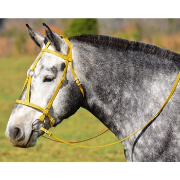 YELLOW MEDIEVAL BAROQUE WAR or PARADE BRIDLE with reins Beta Biothane