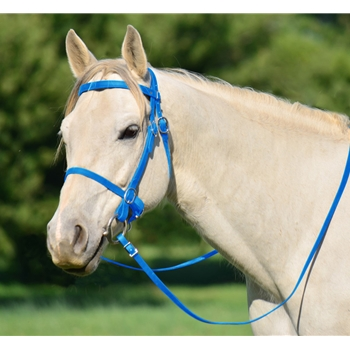 LIGHT BLUE PICNIC BRIDLE or SIMPLE HALTER BRIDLE made from Beta Biothane
