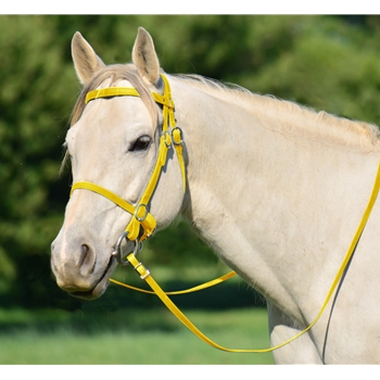 YELLOW PICNIC BRIDLE or SIMPLE HALTER BRIDLE made from Beta Biothane