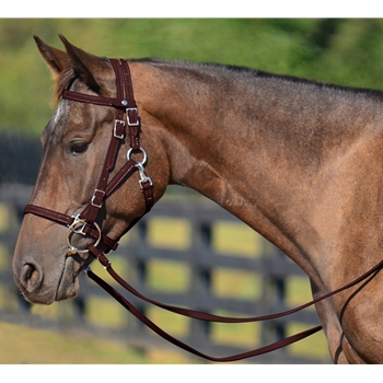 BROWN Quick Change HALTER BRIDLE with Snap on Browband made from BETA BIOTHANE