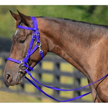 DARK BLUE Quick Change HALTER BRIDLE with Snap on Browband made from BETA BIOTHANE